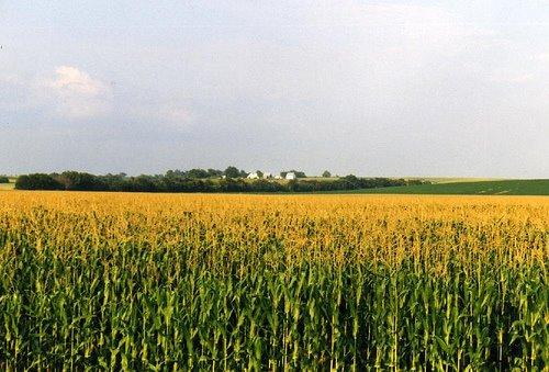 Three Reasons to Visit: Iowa