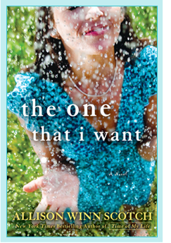 Summer Book Review: The One That I Want