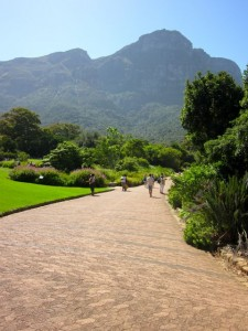 3 Outdoor Activites Near Cape Town