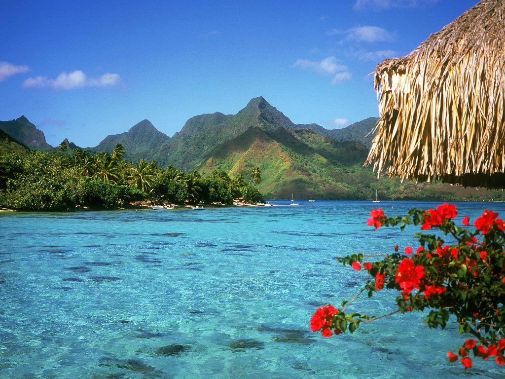 A Ticket to Paradise: French Polynesia