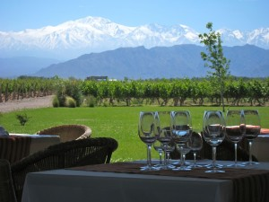 View at Winery, Mendoza
