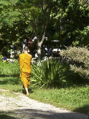 Ten Days of Silence: A Meditation Retreat in Thailand